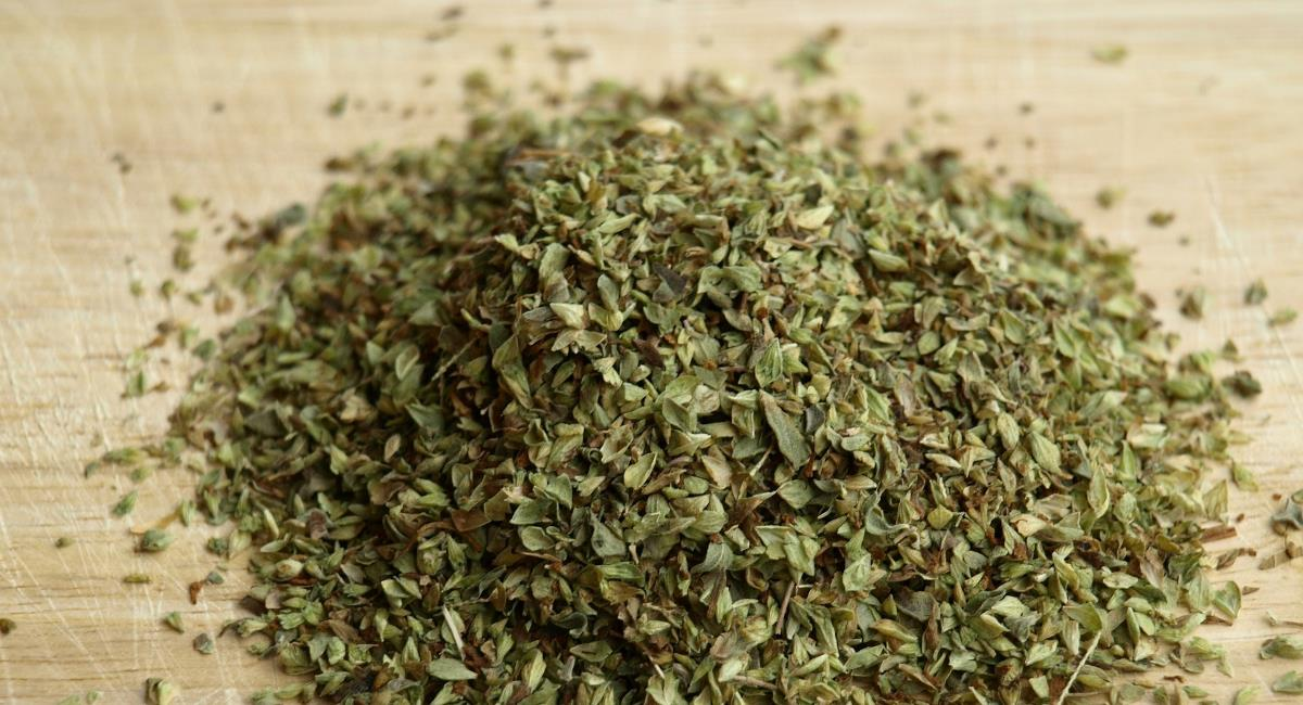 The Greek Oregano
