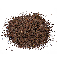 CEMENT BROWN SEED CANADA